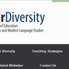 LearnerDiversity Site